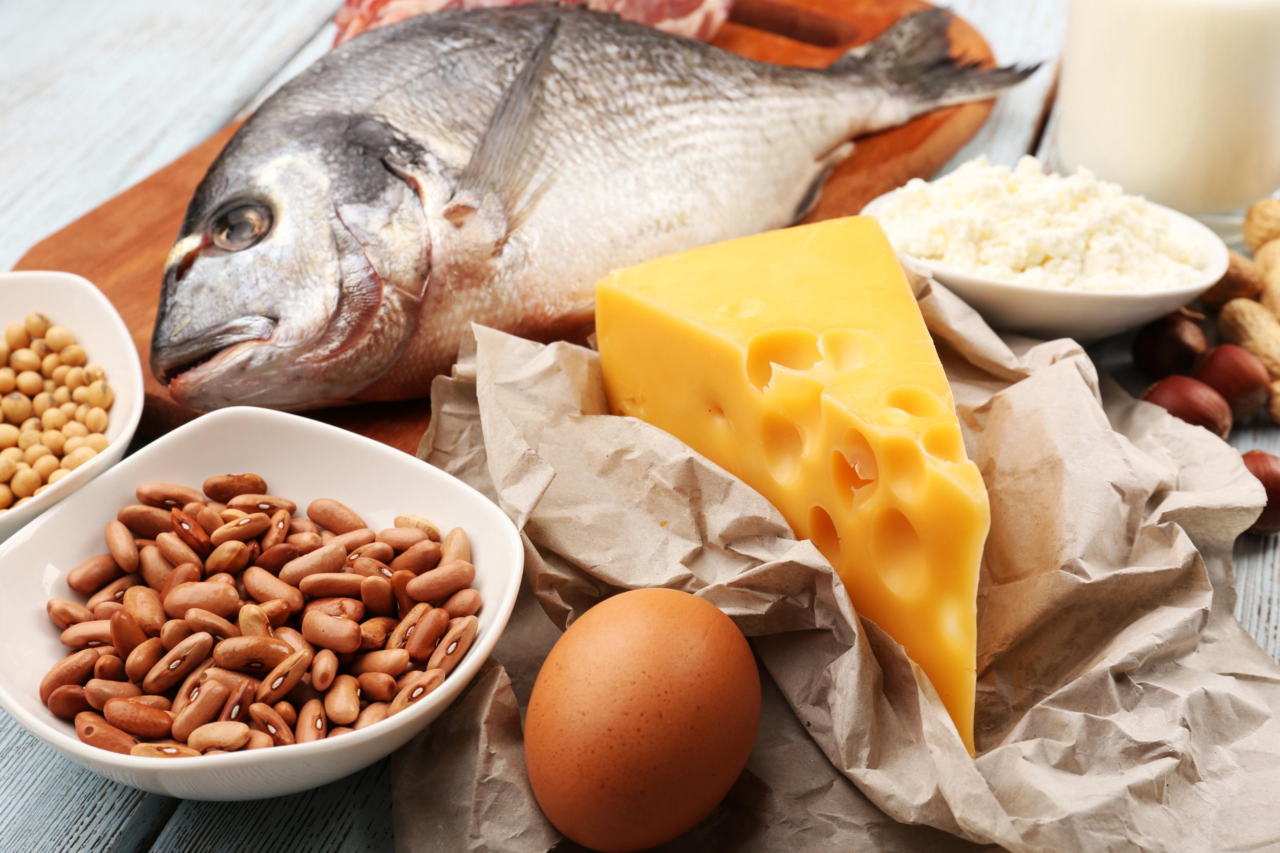 Hrana sa proteinima