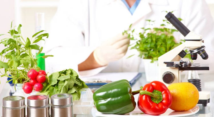 GMO hrana i dijeta