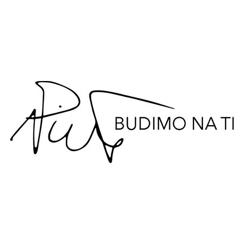 Petar Nikolić logo